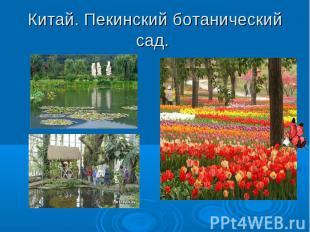 Китай. Пекинский ботанический сад.