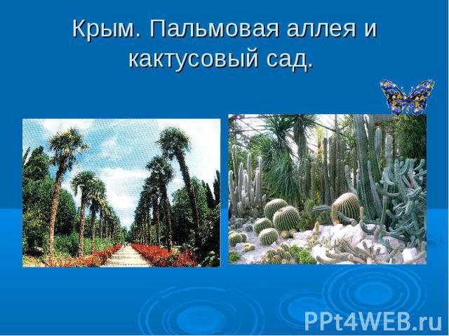 Крым. Пальмовая аллея и кактусовый сад.