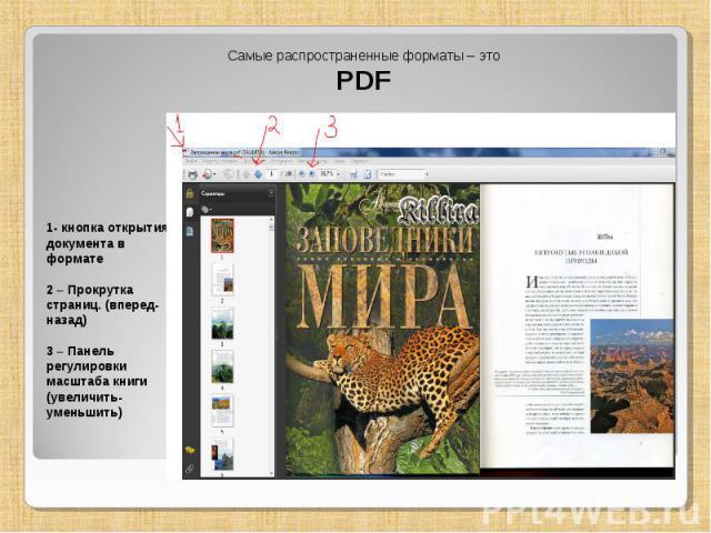 Самые распространенные форматы – это PDF 1- кнопка открытия документа в формате 2 – Прокрутка страниц. (вперед-назад) 3 – Панель регулировки масштаба книги (увеличить-уменьшить)