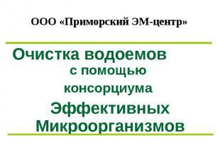 ООО «Приморский ЭМ-центр» Очистка водоемов с помощью консорциума Эффективных Мик