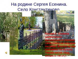 На родине Сергея Есенина. Село Константиново. Поэзия С. Есенина удивительно музы