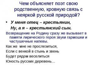 Чем объясняет поэт свою родственную, кровную связь с неяркой русской природой?