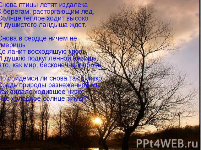 Снова птицы летят издалека К берегам, расторгающим лед, Солнце теплое ходит высоко И душистого ландыша ждет. Снова в сердце ничем не умеришь До ланит восходящую кровь, И душою подкупленной веришь, Что, как мир, бесконечна любовь. Но сойдемся ли снов…