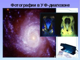 Фотографии в УФ-диапозоне