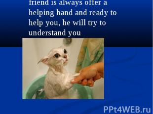 friend is always offer a helping hand and ready to help you, he will try to unde