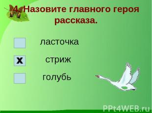 4. Назовите главного героя рассказа.ласточка стриж голубь