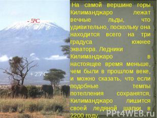 На самой вершине горы Килиманджаро лежат вечные льды, что удивительно, поскольк