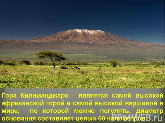Гора Килиманджаро - является самой высокой африканской горой и самой высокой вершиной в мире, по которой можно погулять. Диаметр основания составляет целых 60 километров.