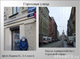 Гороховая улица (фото Вадима В., 3-А класс) Вид на Адмиралтейство с Гороховой ул