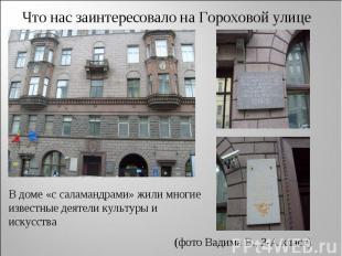 Что нас заинтересовало на Гороховой улице В доме «с саламандрами» жили многие из