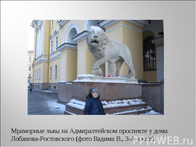 Мраморные львы на Адмиралтейском проспекте у дома Лобанова-Ростовского (фото Вадима В., 3-А класс)