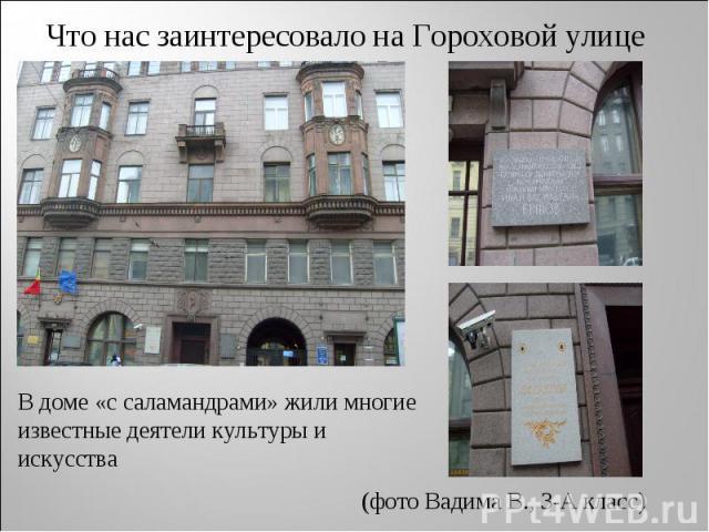 Что нас заинтересовало на Гороховой улице В доме «с саламандрами» жили многие известные деятели культуры и искусства (фото Вадима В., 3-А класс)