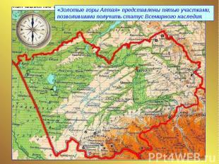 «Золотые горы Алтая» представлены пятью участками, позволившими получить статус