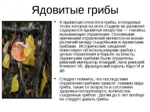 Ядовитые грибы К ядовитым относятся грибы, в плодовых телах которых на всех стад