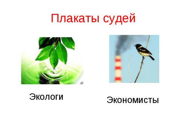 Плакаты судей Экологи Экономисты