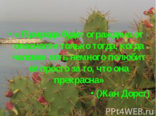 « Природа будет ограждена от опасности только тогда, когда человек хоть немного