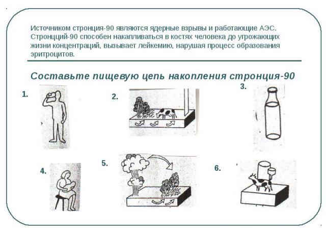 Источником стронция-90 являются ядерные взрывы и работающие АЭС. Стронцций-90 способен накапливаться в костях человека до угрожающих жизни концентраций, вызывает лейкемию, нарушая процесс образования эритроцитов. Составьте пищевую цепь накопления ст…
