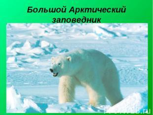 Большой Арктический заповедник Большо й Аркти ческий запове дник— крупнейший за