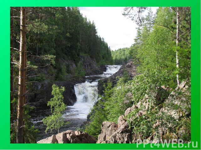 Кива ч— государственный природный заповедник, центральным объектом которого является одноимённый водопад. Заповедник расположен на территории Кондопожского района Республики Карелия.