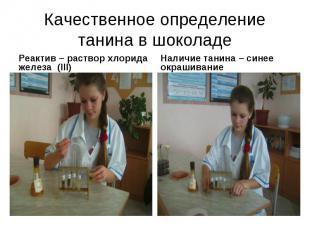Качественное определение танина в шоколадеРеактив – раствор хлорида железа (III)
