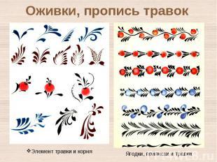 Оживки, пропись травокЭлемент травки и корня Ягодки, приписки и травки
