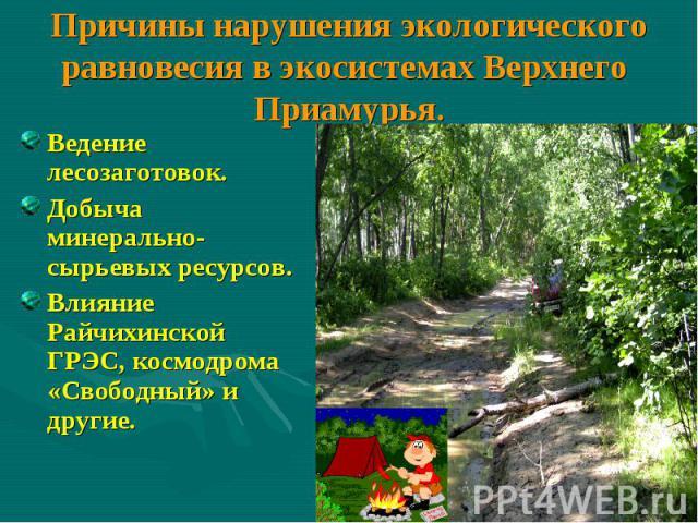 Причины нарушения экологического равновесия в экосистемах Верхнего Приамурья. Ведение лесозаготовок. Добыча минерально-сырьевых ресурсов. Влияние Райчихинской ГРЭС, космодрома «Свободный» и другие.