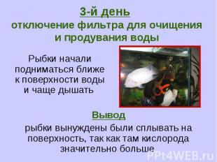 3-й день отключение фильтра для очищения и продувания воды Рыбки начали поднимат