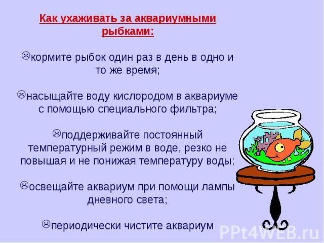 Как ухаживать за аквариумными рыбками: кормите рыбок один раз в день в одно и то же время; насыщайте воду кислородом в аквариуме с помощью специального фильтра; поддерживайте постоянный температурный режим в воде, резко не повышая и не понижая темпе…