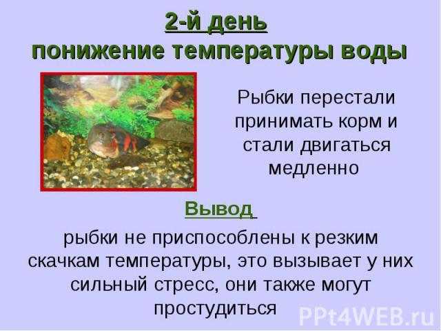2-й день понижение температуры воды Рыбки перестали принимать корм и стали двигаться медленно Вывод рыбки не приспособлены к резким скачкам температуры, это вызывает у них сильный стресс, они также могут простудиться