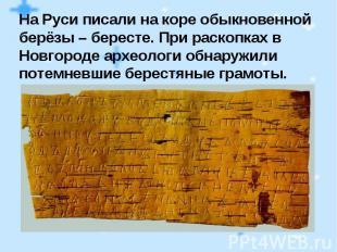На Руси писали на коре обыкновенной берёзы – бересте. При раскопках в Новгороде
