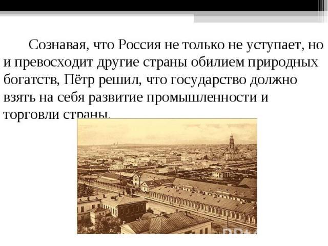 Сознавая, что Россия не только не уступает, но и превосходит другие страны обилием природных богатств, Пётр решил, что государство должно взять на себя развитие промышленности и торговли страны.