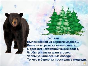 Хозяин Вылез весной из берлоги медведь, Вылез – и сразу же начал реветь. С треск