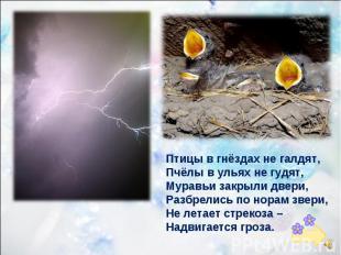 Птицы в гнёздах не галдят, Пчёлы в ульях не гудят, Муравьи закрыли двери, Разбре