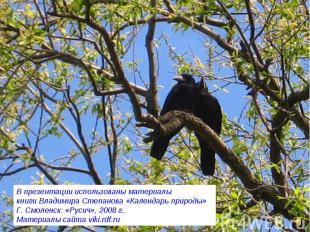 В презентации использованы материалы книги Владимира Степанова «Календарь природ