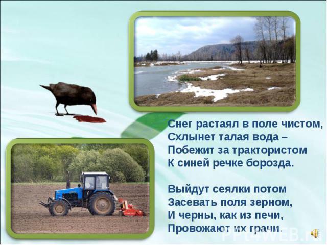 Снег растаял в поле чистом, Схлынет талая вода – Побежит за трактористом К синей речке борозда. Выйдут сеялки потом Засевать поля зерном, И черны, как из печи, Провожают их грачи.