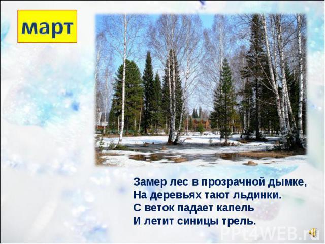 Замер лес в прозрачной дымке, На деревьях тают льдинки. С веток падает капель И летит синицы трель.