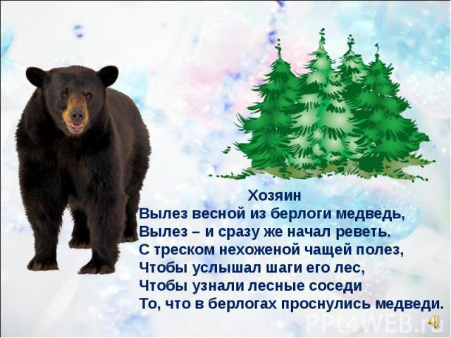 Хозяин Вылез весной из берлоги медведь, Вылез – и сразу же начал реветь. С треском нехоженой чащей полез, Чтобы услышал шаги его лес, Чтобы узнали лесные соседи То, что в берлогах проснулись медведи.