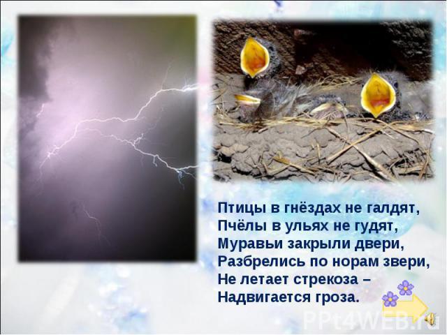 Птицы в гнёздах не галдят, Пчёлы в ульях не гудят, Муравьи закрыли двери, Разбрелись по норам звери, Не летает стрекоза – Надвигается гроза.