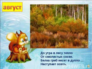 До утра в лесу тепло От смолистых сосен. Белка гриб несет в дупло … Наступает ос