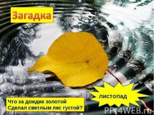 Что за дождик золотой Сделал светлым лес густой? листопад