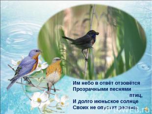 Им небо в отвёт отзовётся Прозрачными песнями птиц, И долго июньское солнце Свои