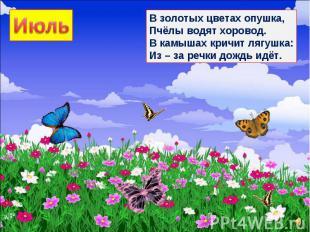 В золотых цветах опушка, Пчёлы водят хоровод. В камышах кричит лягушка: Из – за