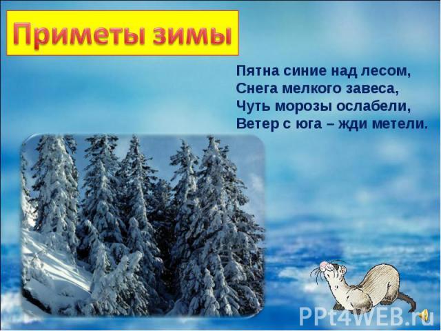 Пятна синие над лесом, Снега мелкого завеса, Чуть морозы ослабели, Ветер с юга – жди метели.