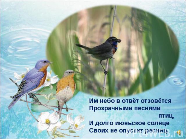 Им небо в отвёт отзовётся Прозрачными песнями птиц, И долго июньское солнце Своих не опустит ресниц.