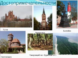 Достопримечательности Гусев Балтийск Черняховск Светлогорск Танцующий лес. Куршс