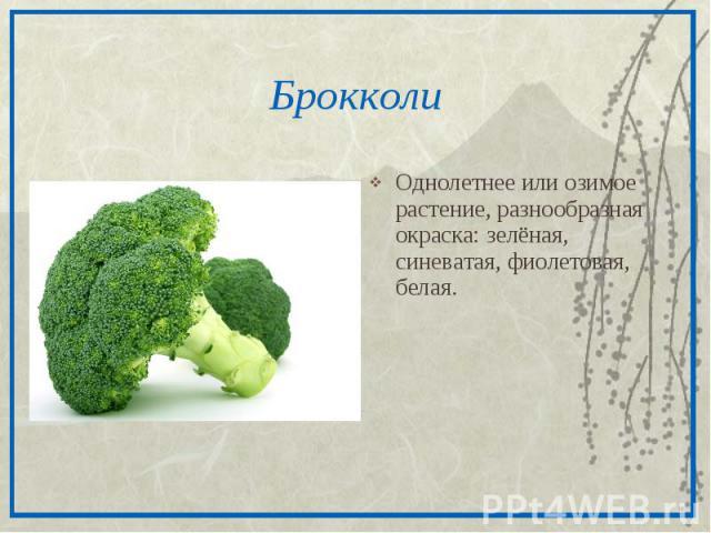 БрокколиОднолетнее или озимое растение, разнообразная окраска: зелёная, синеватая, фиолетовая, белая.