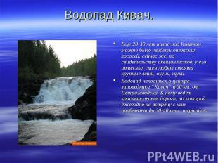 Водопад Кивач. Еще 20-30 лет назад под Кивачом можно было увидеть онежских лосос