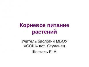 Корневое питание растений Учитель биологии МБОУ «СОШ» пст. Студенец Шосталь Е. А