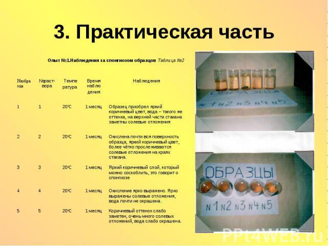 3. Практическая часть Опыт №1.Наблюдения за спонгиозом образцов Таблица №2
