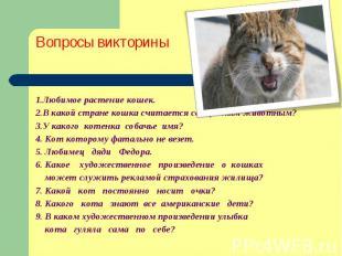Вопросы викторины 1.Любимое растение кошек. 2.В какой стране кошка считается свя